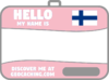 Flag name tag ver 2 (Pink)